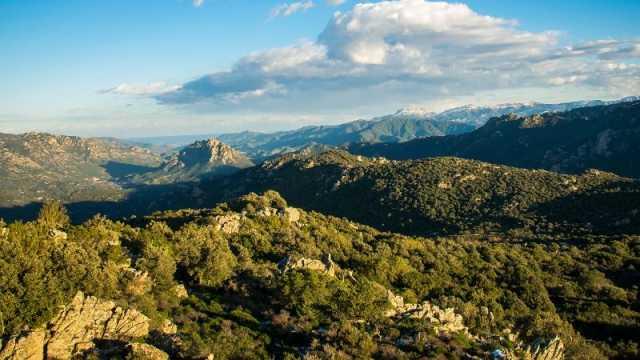 Passaggio di consegne alla guida del Parco di Tepilora