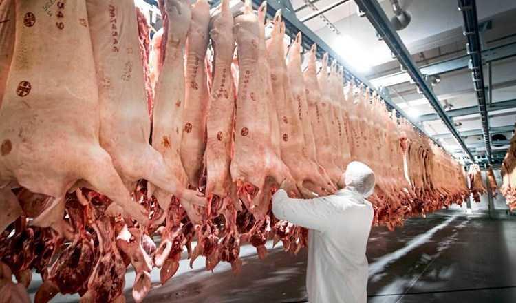 Coronavirus, nuovo focolaio in Germania: oltre 600 contagi in fabbrica di carne